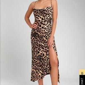 Leopard dress never worn